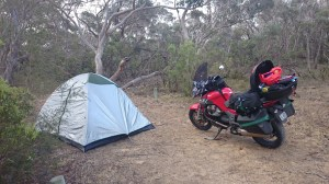 Camp at Salt water creek