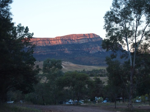 View from camp at Rawnsley Park Station